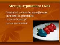Методи отримання ГМО Отримують генетично модифіковані організми за допомогою:...