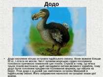 Додо Додо населяли кілька островів Індійського океану. Вони важили більше 20 ...