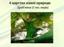 4 царства живої природи Дроб'янки (5 тис. видів)
