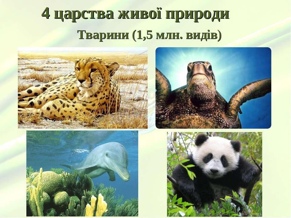 4 царства живої природи Тварини (1,5 млн. видів)