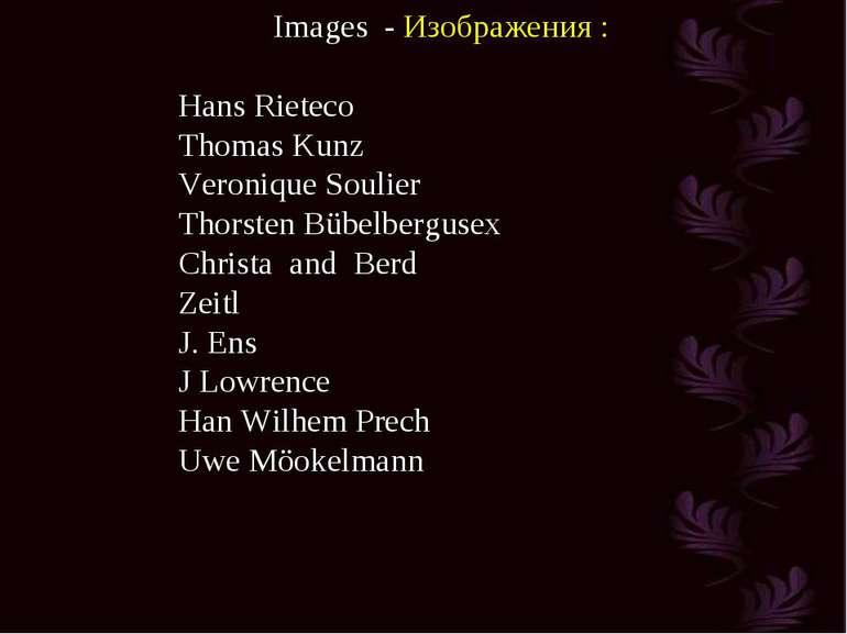Images - Изображения : Hans Rieteco Thomas Kunz Veronique Soulier Thorsten Bü...