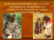 In the northern hemisphere the brown bear was long feared, admired and even w...