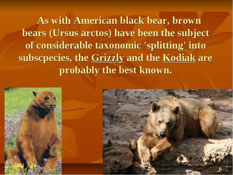 As with American black bear, brown bears (Ursus arctos) have been the subject...