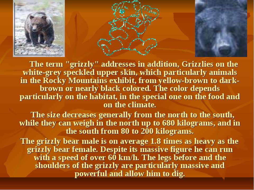 "The term ""grizzly"" addresses in addition, Grizzlies on the white-grey speckle..."