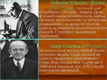 Бейєрінк Мартінус Віллем (1851-1931р.р.) голландський мікробіолог і ботанік, ...