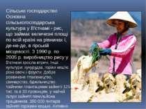 Сільське господарство Основна сільськогосподарська культура у В'єтнамі - рис,...