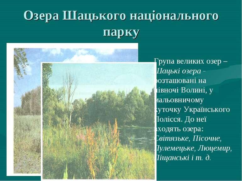 Озера Шацького національного парку Група великих озер – Шацькі озера - розташ...