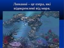 Лиманні – це озера, які відокремлені від моря.