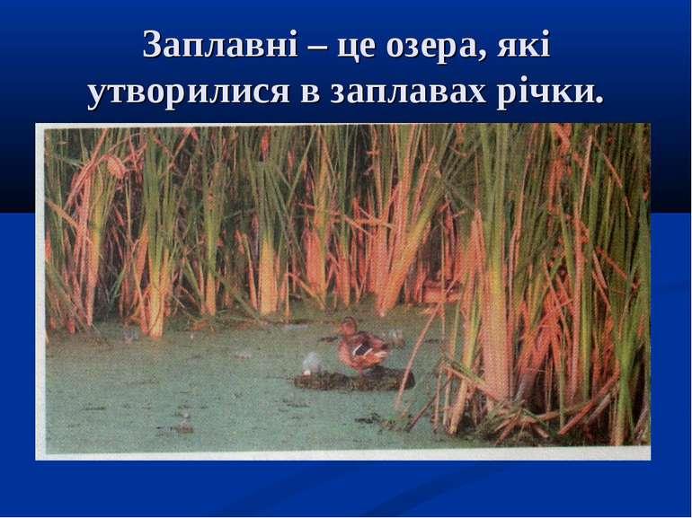 Заплавні – це озера, які утворилися в заплавах річки.