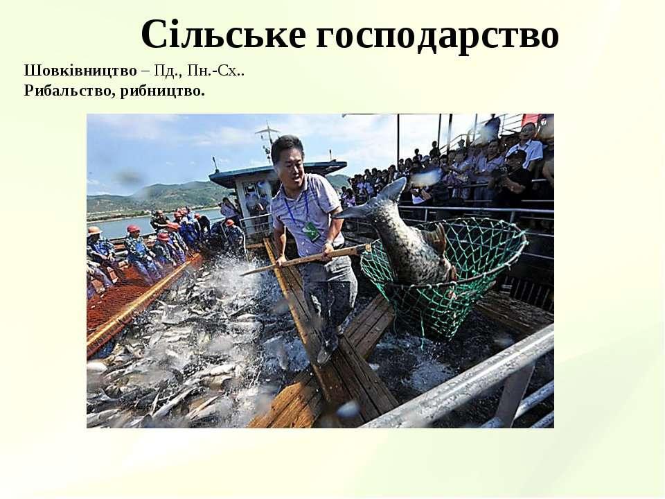 Сільське господарство Шовківництво – Пд., Пн.-Сх.. Рибальство, рибництво.