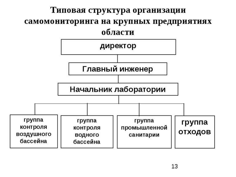 Типовая структура организации самомониторинга на крупных предприятиях области...