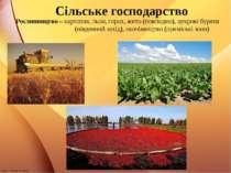 Сільське господарство Рослинництво – картопля, льон, горох, жито (повсюдно), ...