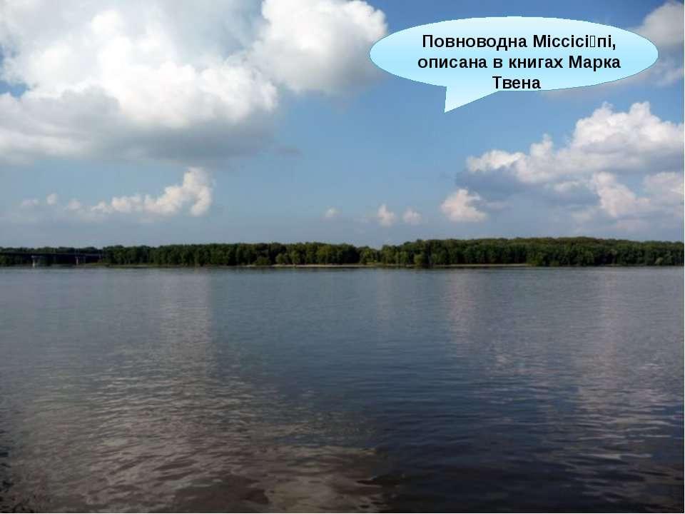 Повноводна Міссісі пі, описана в книгах Марка Твена