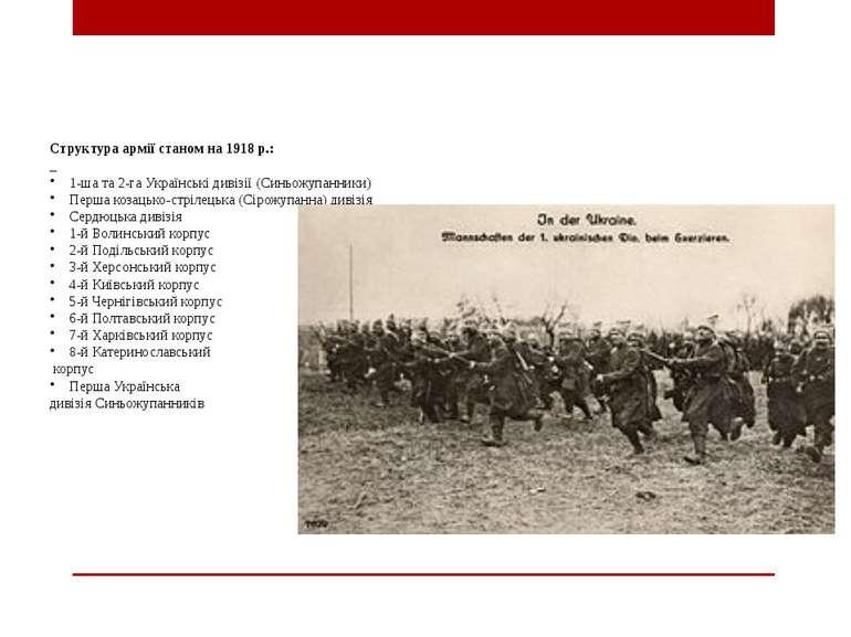 Структура армії станом на 1918р.: 1-ша та 2-га Українські дивізії (Синьожупа...