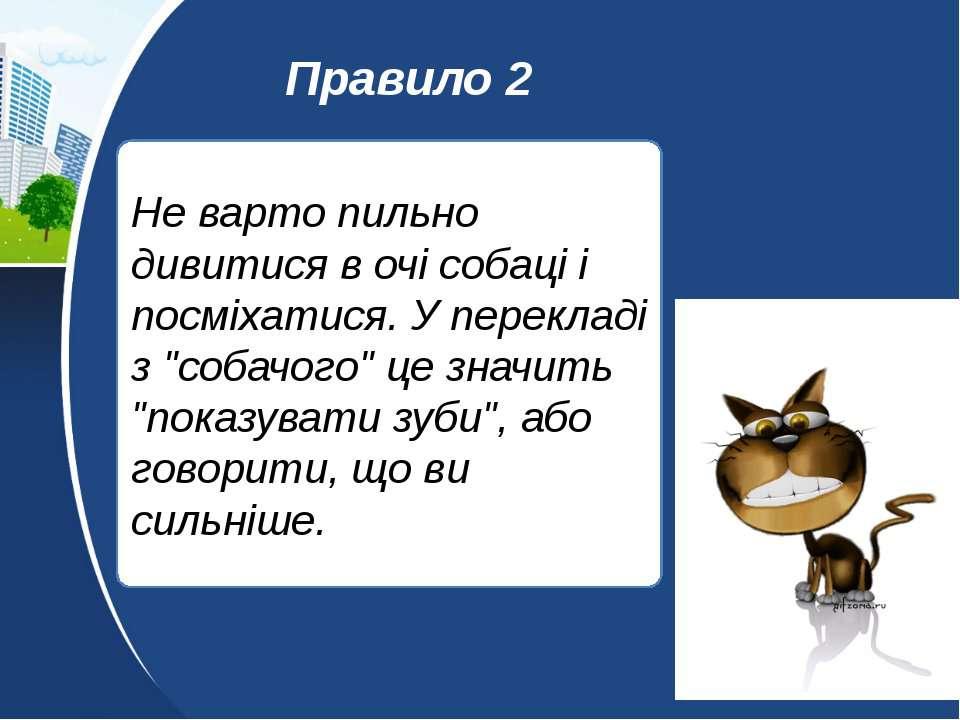 """Не варто пильно дивитися в очі собаці і посміхатися. У перекладі з """"собачого""""..."""