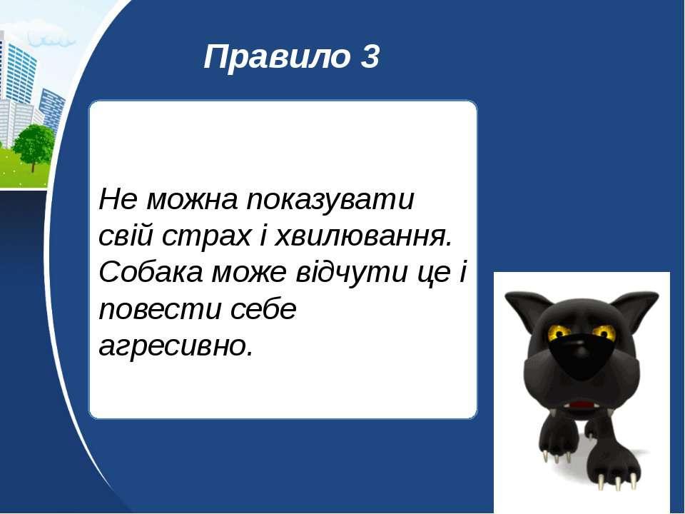 Не можна показувати свій страх і хвилювання. Собака може відчути це і повести...