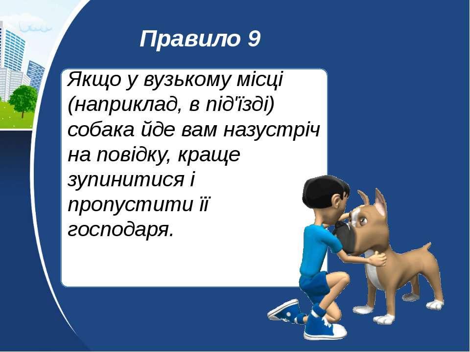 Якщо у вузькому місці (наприклад, в під'їзді) собака йде вам назустріч на пов...