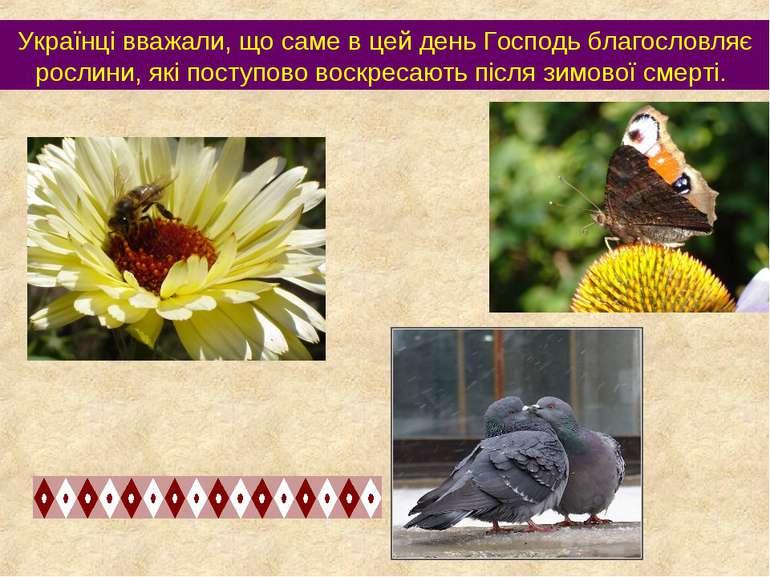 Українці вважали, що саме в цей день Господь благословляє рослини, які поступ...