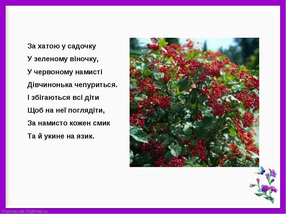 За хатою у садочкуУ зеленому віночку,У червоному намистіДівчинонька чепуритьс...