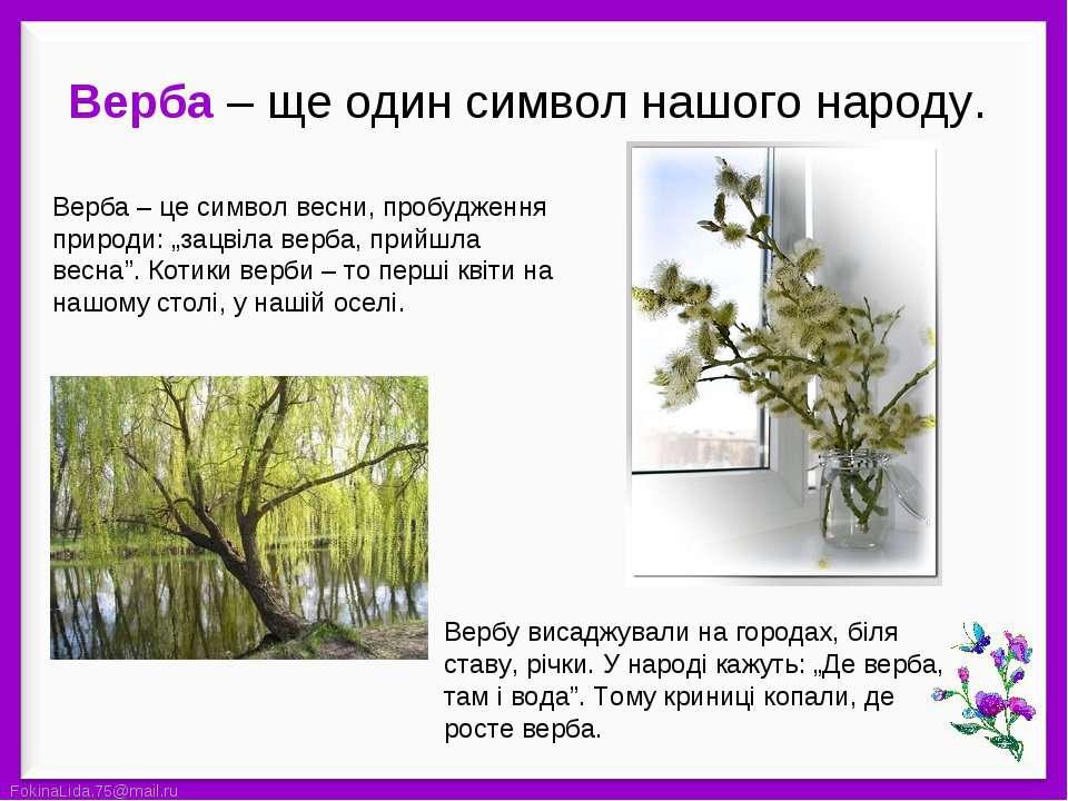 """Верба – це символ весни, пробудження природи: """"зацвіла верба, прийшла весна""""...."""