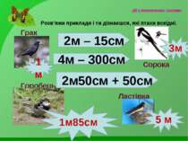 Дії з іменованими числами Розв'яжи приклади і ти дізнаєшся, які птахи всеїдні...
