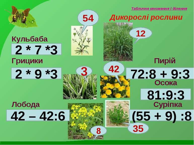 Табличне множення і ділення Дикорослі рослини Кульбаба Грицики Пирій Осока Ло...