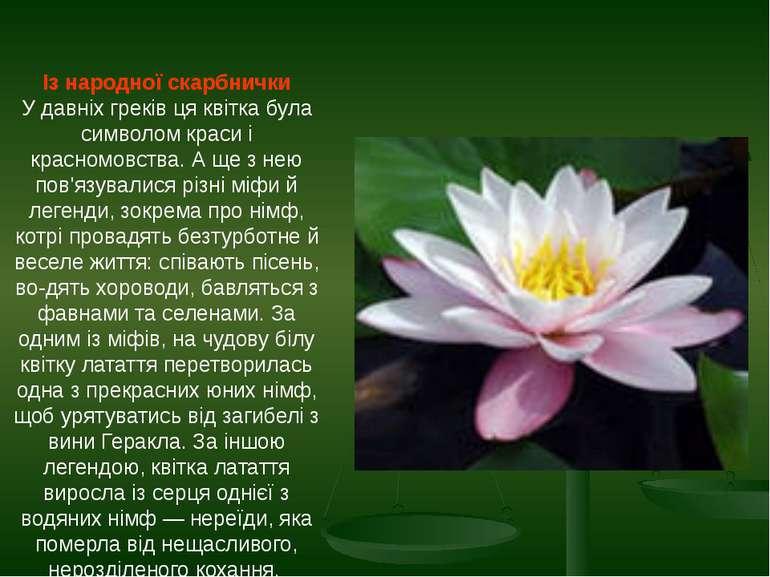 Із народної скарбнички У давніх греків ця квітка була символом краси і красно...