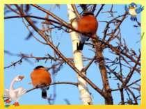 У червонім фартушку птах стрибає по сніжку і розпитує синичку про найближчу г...