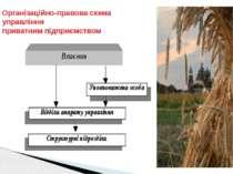 Організаційно-правова схема управління приватним підприємством