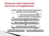 Загальна схема управління суб'єктом господарювання