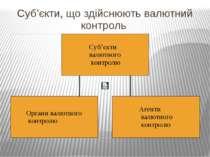Суб'єкти, що здійснюють валютний контроль