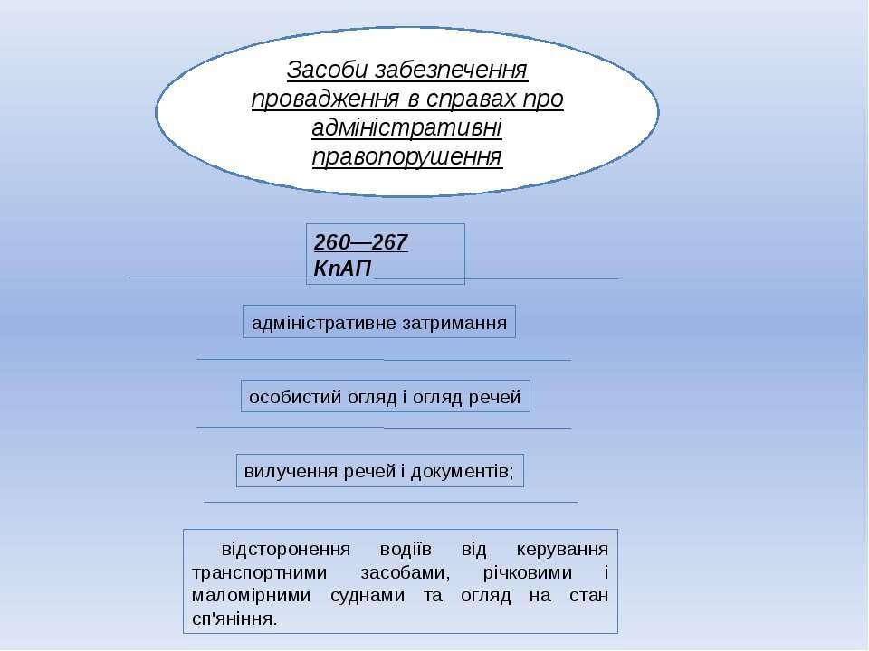 Засоби забезпечення провадження в справах про адміністративні правопорушення ...