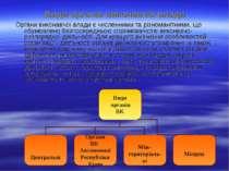 Види органів виконавчої влади Органи виконавчої влади є численними та різнома...