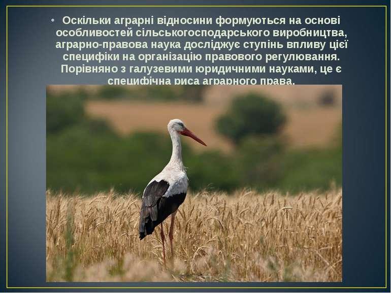 Оскільки аграрні відносини формуються на основі особливостей сільськогосподар...
