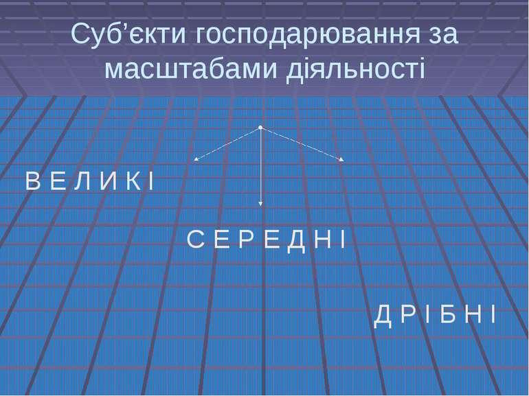 Суб'єкти господарювання за масштабами діяльності В Е Л И К І С Е Р Е Д Н І Д ...