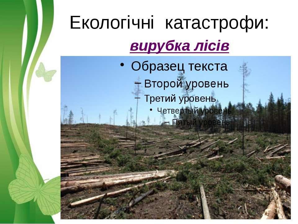 Екологічні катастрофи: вирубка лісів