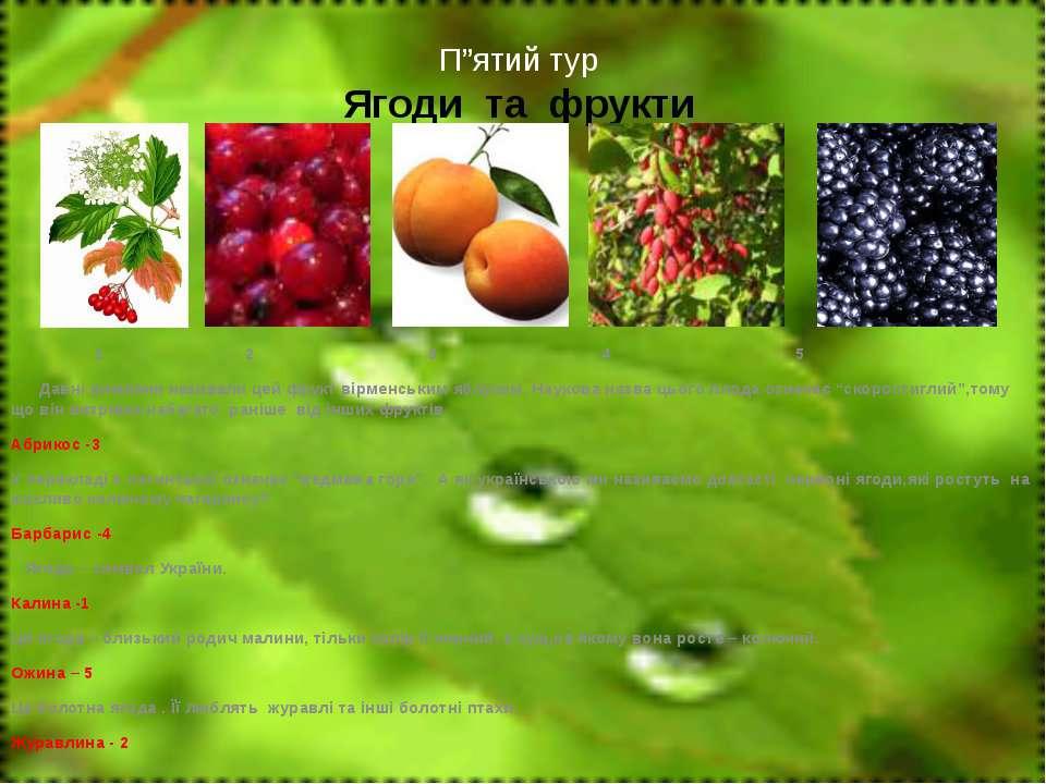 """П""""ятий тур Ягоди та фрукти 1 2 3 4 5 Давні римляни називали цей фрукт вірменс..."""