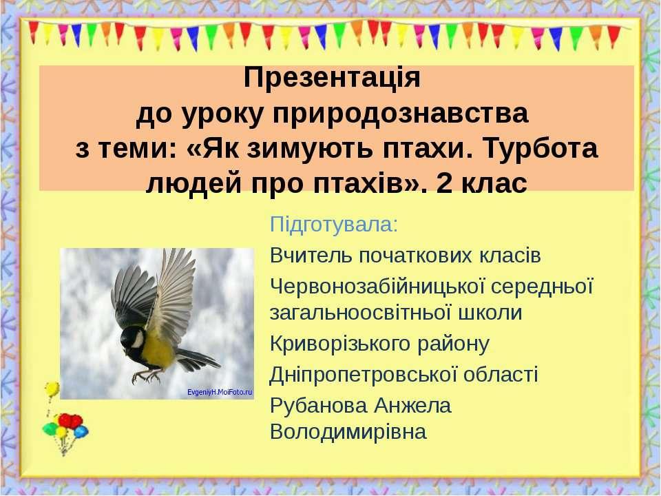 Презентація до уроку природознавства з теми: «Як зимують птахи. Турбота людей...