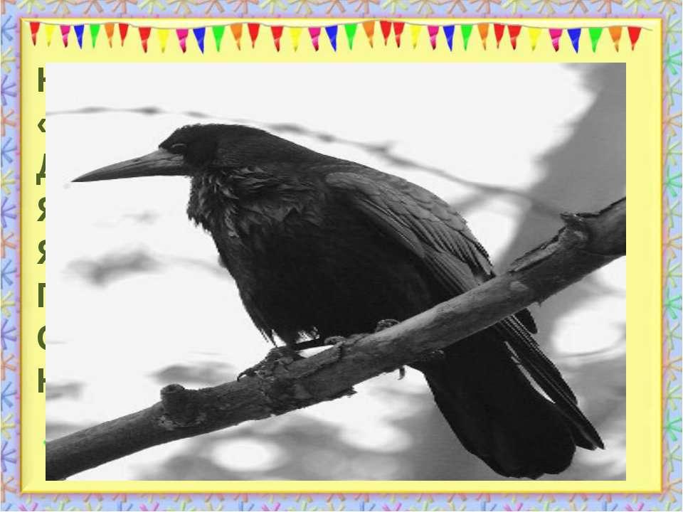 Нахвалялась птиця чорна: « Я весела, я моторна, Довгий дзьоб та довгий хвіст,...