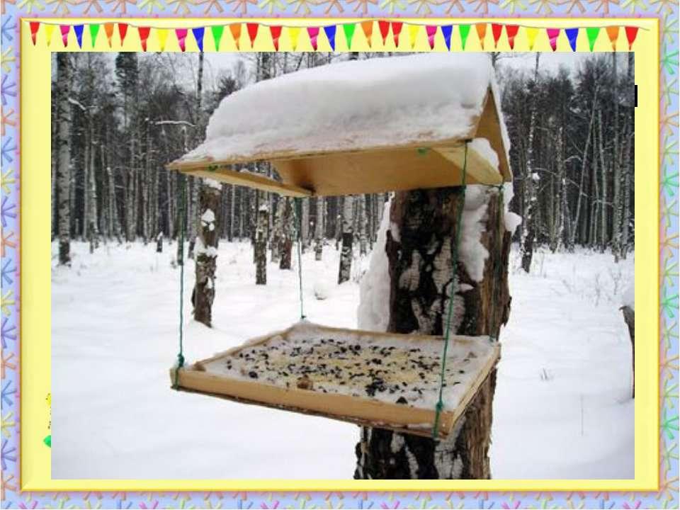 Чи можуть люди допомогти птахам пережити зиму? У зимовий день серед гілок Сті...