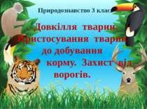 . Довкілля тварин. Пристосування тварин до добування корму. Захист від ворогі...