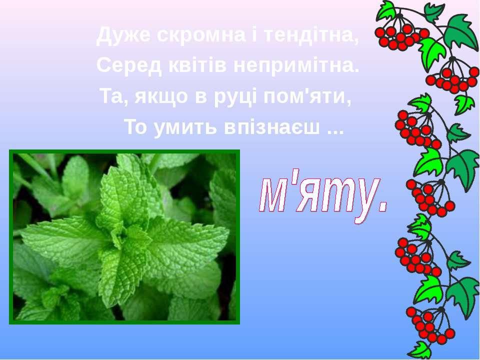 Дуже скромна і тендітна, Серед квітів непримітна. Та, якщо в руці пом'я...