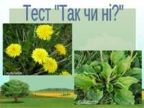 Чи культурні ці рослини: Помідор, гарбуз, малина, Морква, жито, огірки, Мак, ...