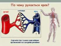 артерії капіляри вени З органів тіла і тканин кров забирає вуглекислий газ і ...