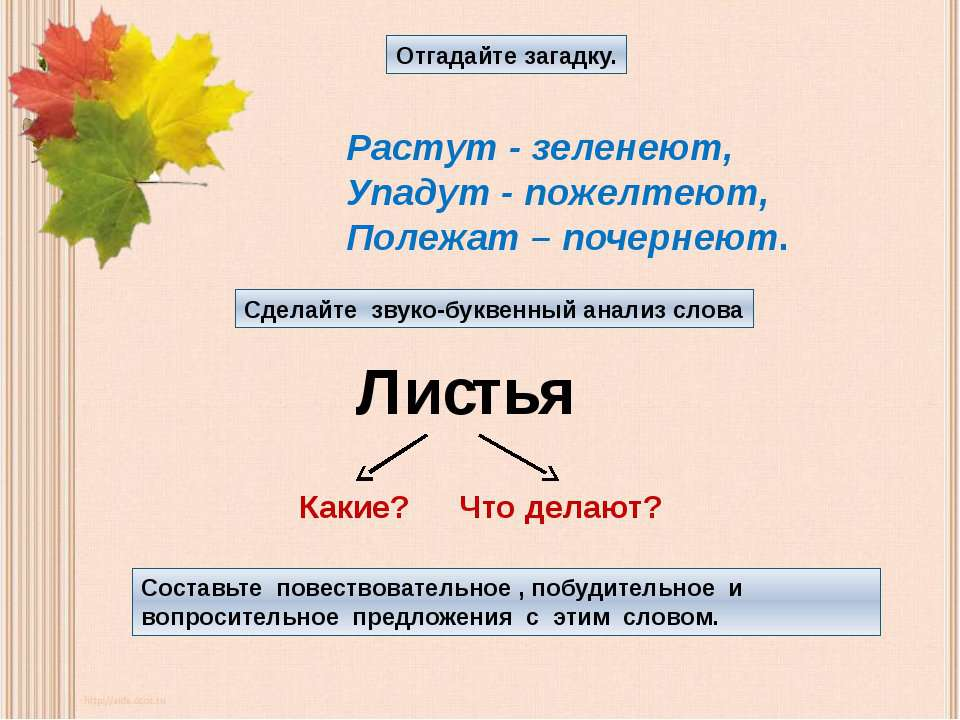 Отгадайте загадку. Растут - зеленеют, Упадут - пожелтеют, Полежат – почернеют...