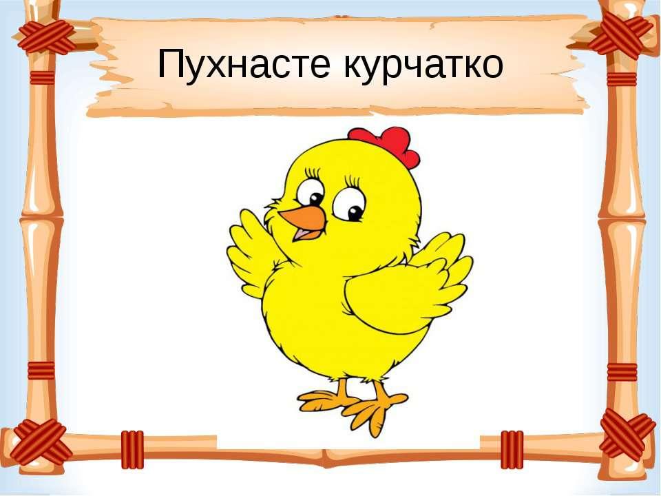 Пухнасте курчатко