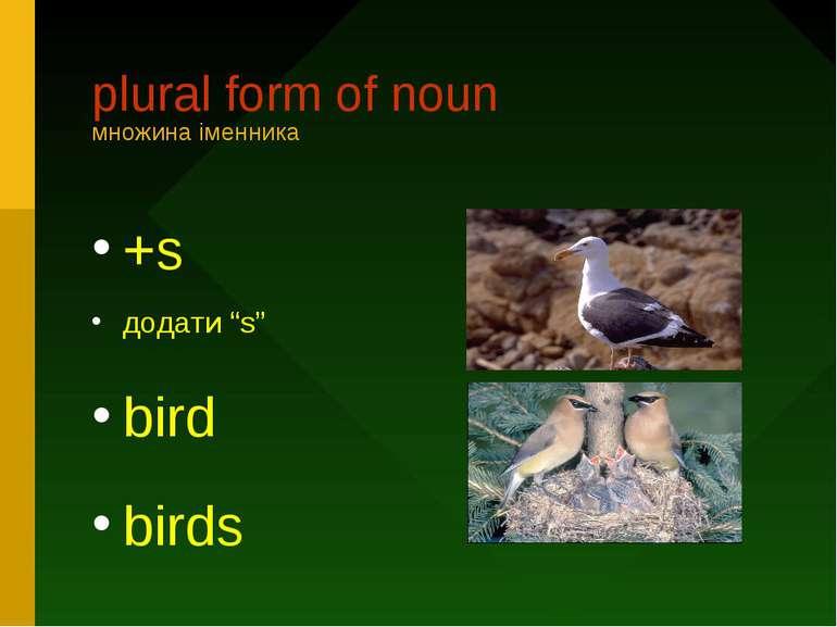 "plural form of nounмножина іменника+sдодати ""s"" birdbirds"