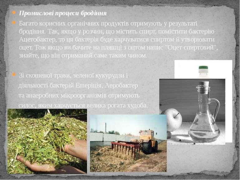 Промислові процеси бродіння Багато корисних органічних продуктів отримують у ...