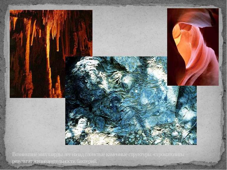 Возникшие миллиарды лет назад слоистые каменные структуры -строматолиты – рез...