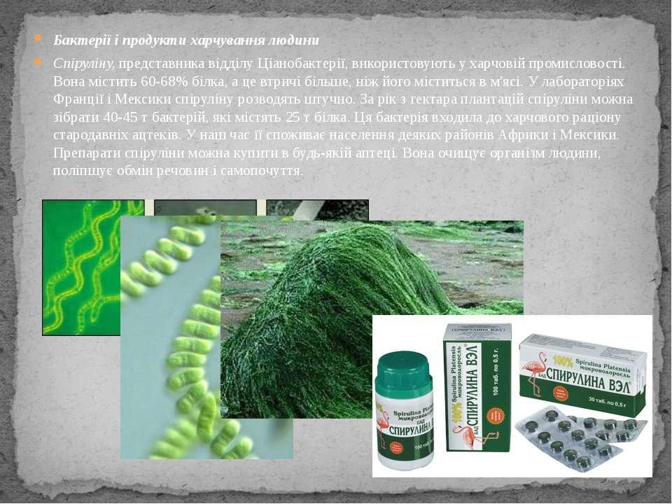 Бактерії і продукти харчування людини Спіруліну, представника відділу Ціаноба...